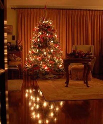 christmas28a112010004.jpg